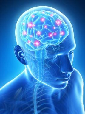 направления неврологии