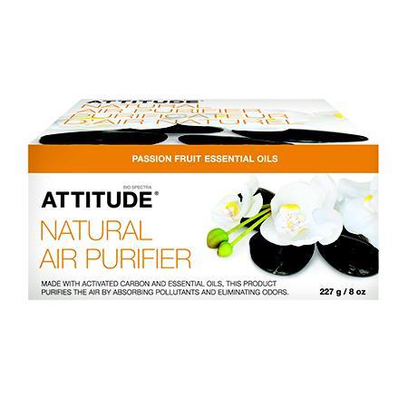Купить Очиститель воздуха маракуя attitude