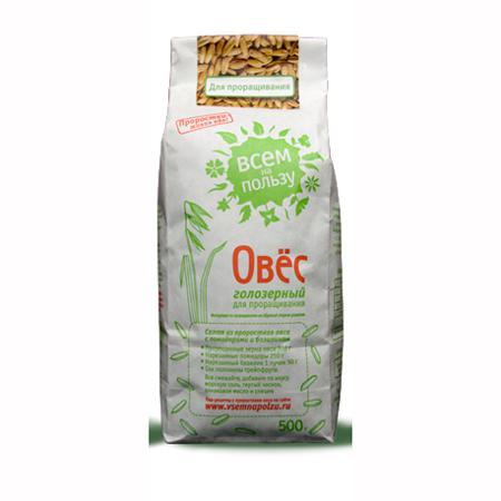 Купить Овес голозерный для проращивания «всем на пользу»